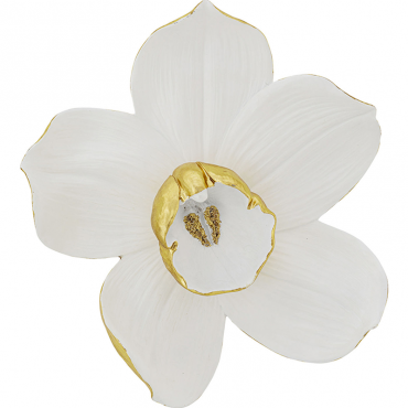 Deco Pared Orchid blanco 44